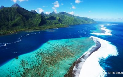 Diving trip to French Polynesia : Bora Bora